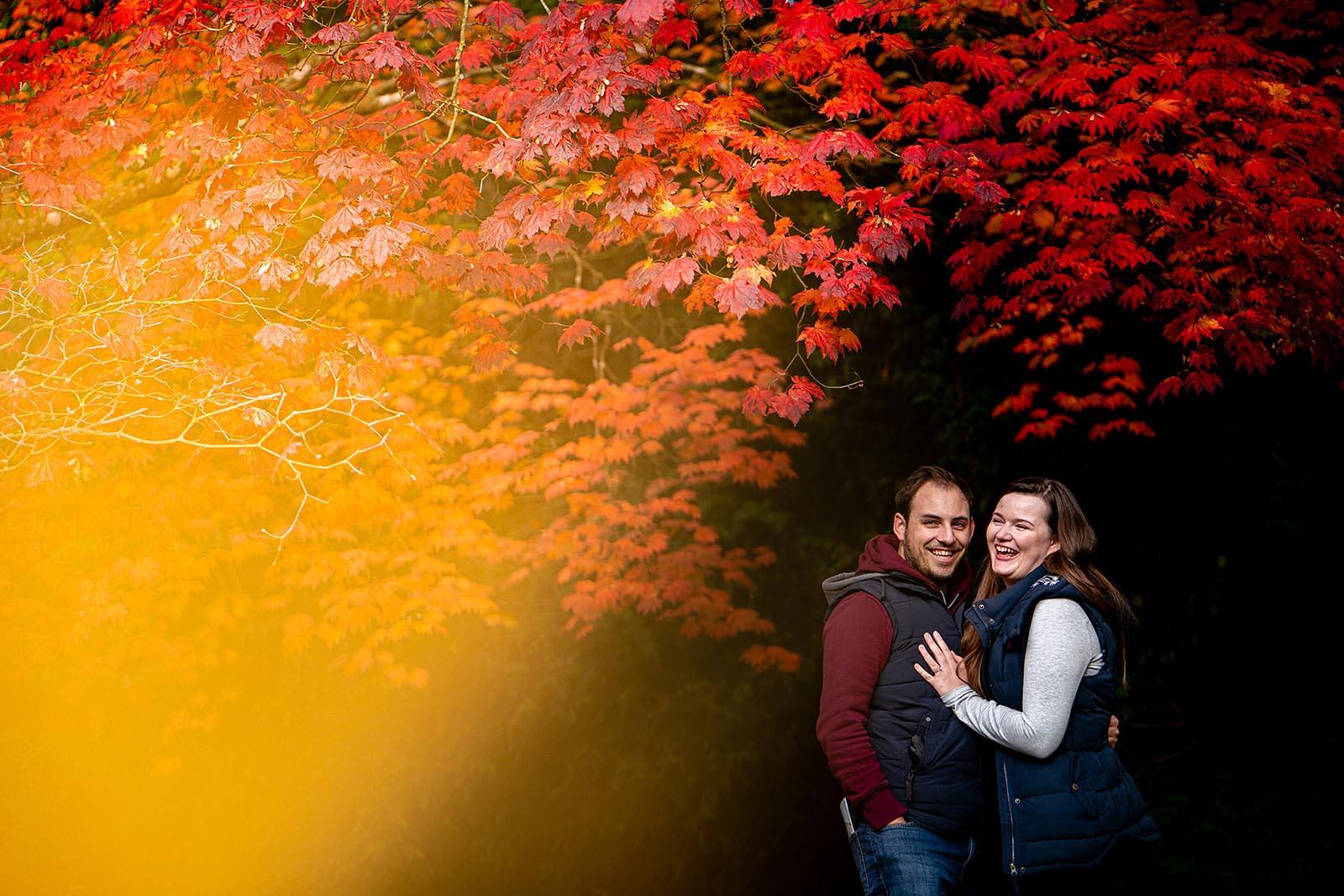 westonbirt arboretum engagement shoot